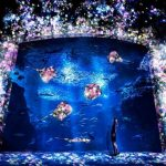デジタルアートを観に美術館・水族館に行こう!チームラボの最新イベントを確認しておこう!